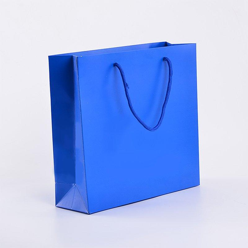 Clothing Oem Custom Printed Own Logo Plastic Shopping Bag Packaging Bag