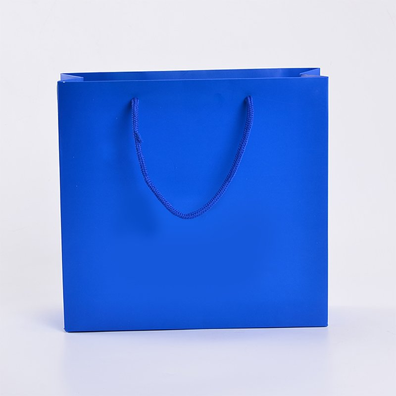 SWIFT printing paper bag manufacturers factory for t shirt-4
