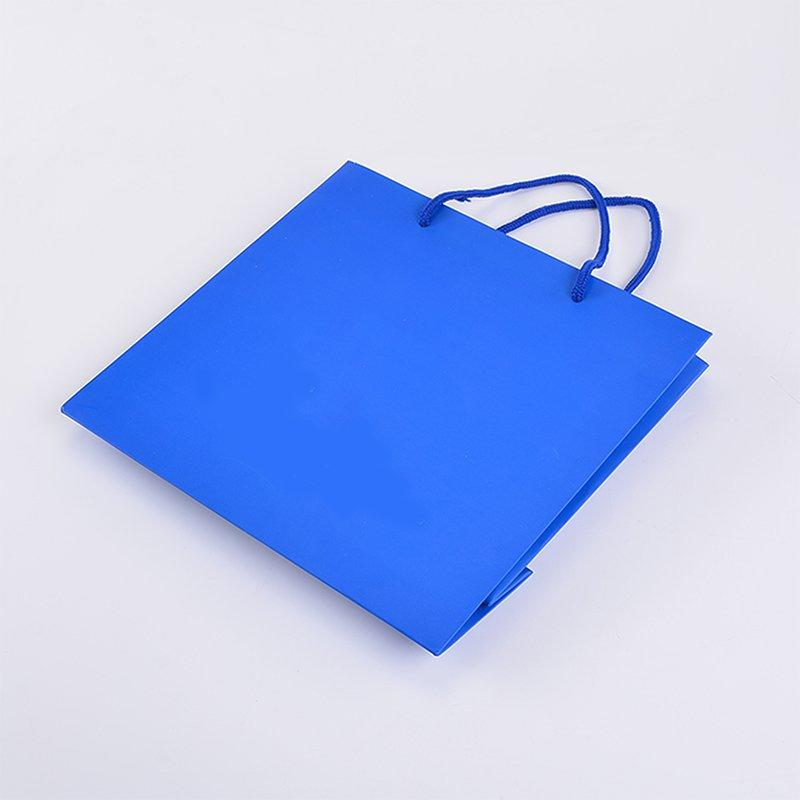 SWIFT printing paper bag manufacturers factory for t shirt-3