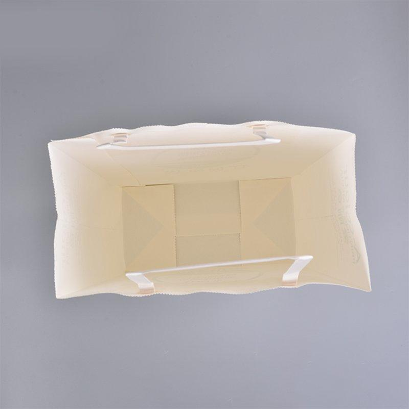 SWIFT paper bag manufacturers manufacturer for swimwear-3