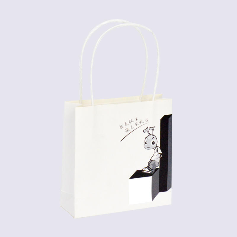 Custom Luxury Gift Paper Packaging Bag