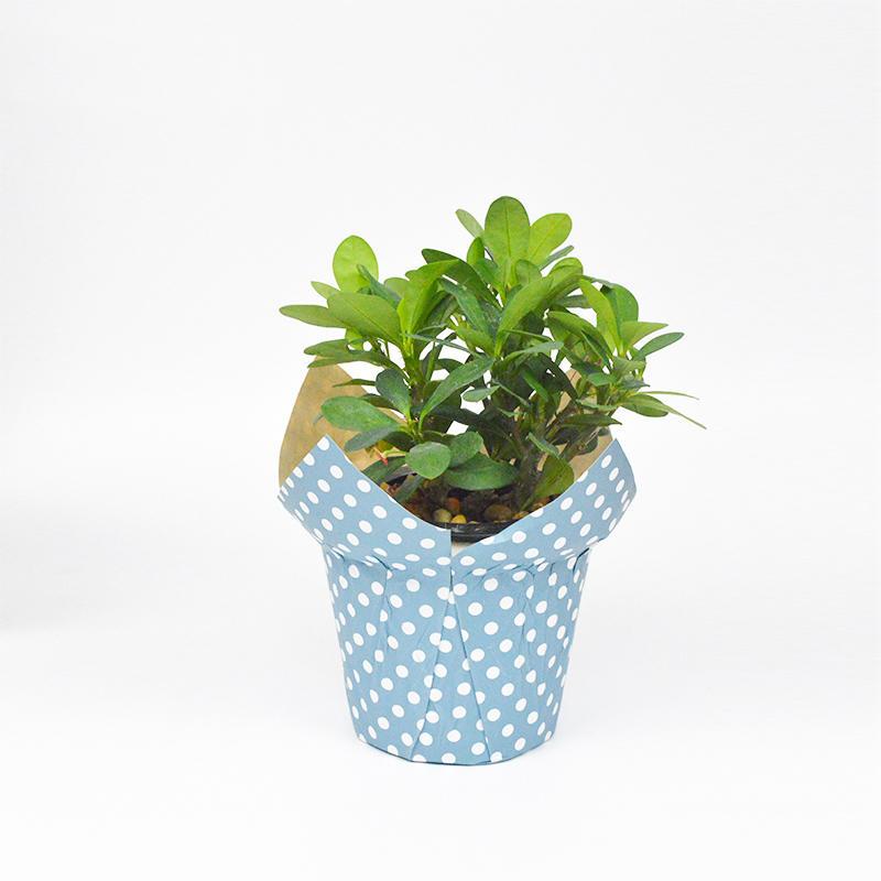 Kraft Paper Flower Pot Covers For Decoration