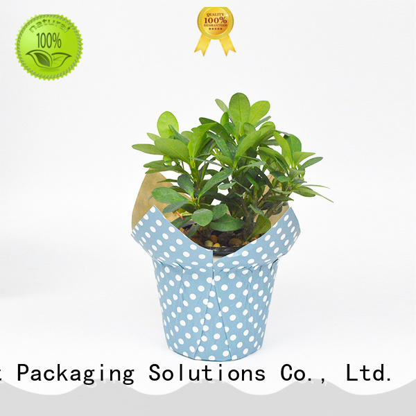 popular flower pot cover supplier for potted plant