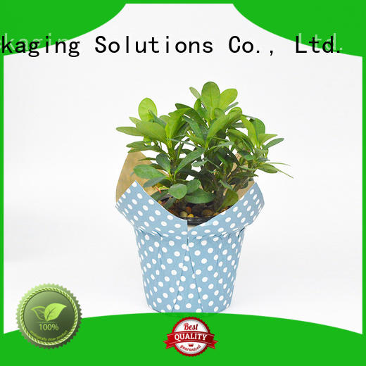 SWIFT paper pot cover factory for potted plant